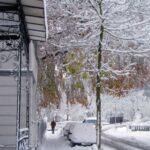 Ooops, Winter!