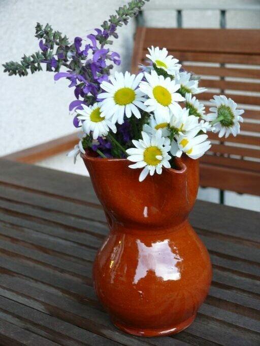 Gemeine Wucherblume