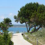 12 Tage Formentera