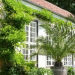 Botanischer Garten Münster (Teil 2)