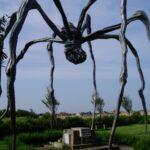 Wer liegt unter der Spinne?